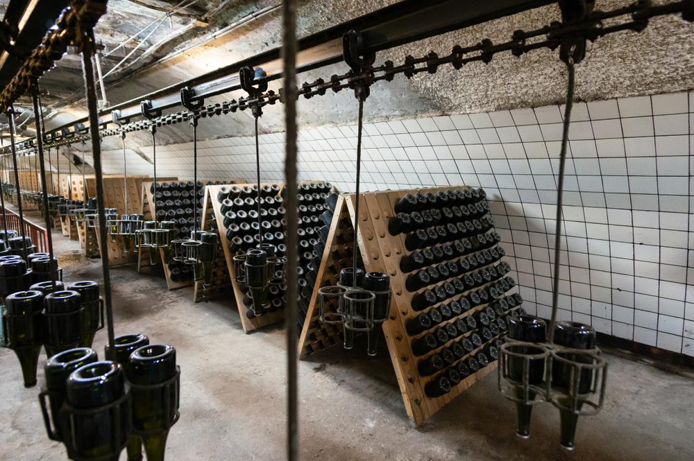 Schoolreis Champagne en Reims | Schoolreizen Omnitravel